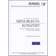Mini-Blech-Konzert